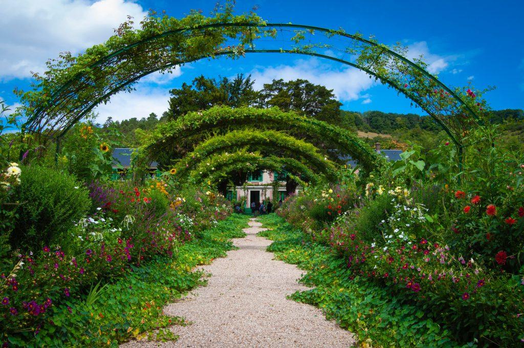 Zaprojektowany ogród